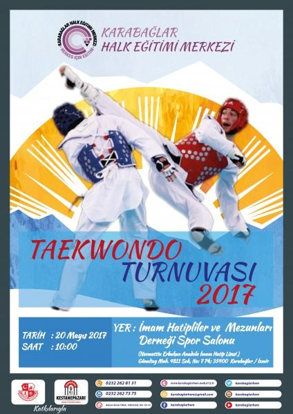 Taekwondo Turnuvası 2017